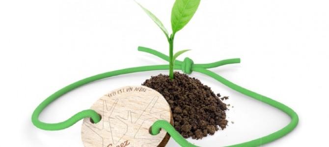 Concours : 8 Treez à gagner/arbre planté en votre nom